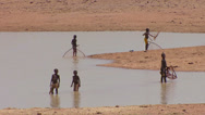 Stock Video Footage of Children use conical nets to catch fish in a pool along a river in mali, Africa.