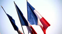 Slow Motion - Flag of France in the Wind Stock Footage