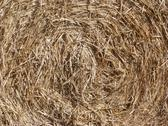 Stock Photo of Roll of Hay