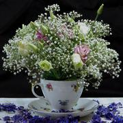 Floral display in a teacup - stock photo