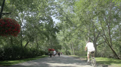 Bow River Pathway Stock Footage