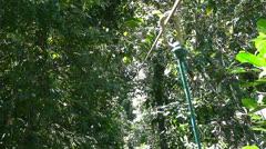 A man ziplines through a jungle ravine in Costa Rica. Stock Footage