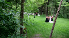 Bridal Party lined up for a photo Stock Footage