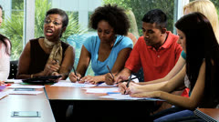 Stock Video Footage of Young College Undergraduates Working Female Tutor