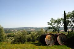 Barrels for chianti wine Stock Photos