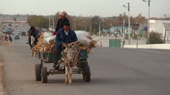 An donkey cart travels on a busy highway in Uzbekistan. - stock footage