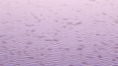 Ria Formosa - Water Texture A Stock Footage