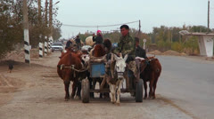 An oxcart travels on a road in Uzbekistan. Stock Footage