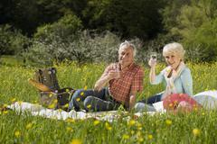 Germany, Baden Wurttemberg, Tubingen, Senior couple having picnic - stock photo