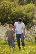 Germany, Baden Wurttemberg, Tubingen, Father and son walking in meadow - stock photo