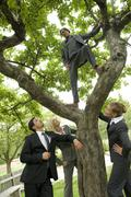 Germany, business people standing under tree, one man standing on branches Stock Photos