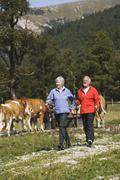 Austria, Karwendel, Senior couple nordic walking - stock photo