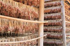 onion dry in storehouse   in northern of thailand - stock photo