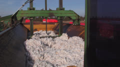 Cotton packed into module Stock Footage