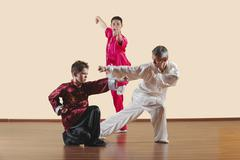 Kung Fu, Changquan, Xiebu chongquan, Chabu hengquan, Tixi tiaozhang, Long Fist - stock photo