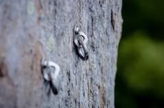 Climbing carabiner Stock Photos
