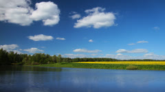 Summer nature, forest lake landscape, time-lapse. - stock footage