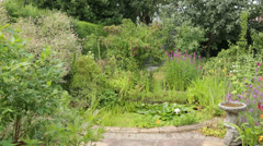 Pond and plants in house back yard Stock Footage