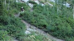 Young boy grandson runs down mountain trail HD 8611 Stock Footage
