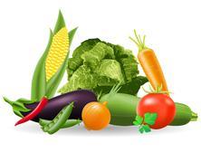 Still life of vegetables illustration Stock Illustration