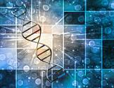 Stock Illustration of Genetics