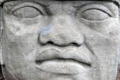 olmec colossal head - stock photo