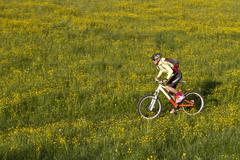 Germany, Bavaria, Schliersee, Woman mountain biking in field Stock Photos