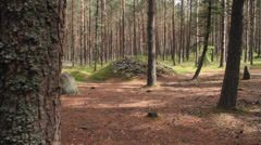 Stone circles, viking cemetery Stock Footage