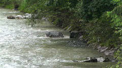 Strong Curent Mountain River 5 Stock Footage