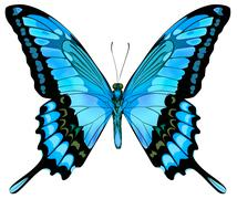 Beautiful isolated blue butterfly Stock Illustration