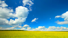 Summer yellow field landscape with clouds running across the sky, time-lapse. - stock footage