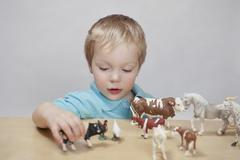 Boy playing with toy farm animals Stock Photos