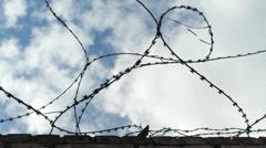 Razor wire. - stock footage