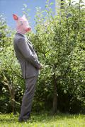 Businessman with pig's head urinating on tree - stock photo