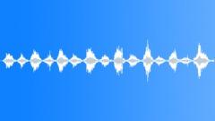 Scratching 03 sFX - sound effect