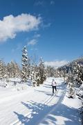 Stock Photo of Germany, Bavaria, Aschermoos, Senior woman doing cross-country skiing