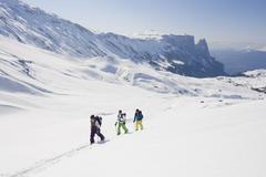 Italy, Trentino-Alto Adige, Alto Adige, Bolzano, Seiser Alm, Group of people on - stock photo