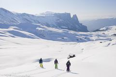 Italy, Trentino-Alto Adige, Alto Adige, Bolzano, Seiser Alm, Group of people - stock photo