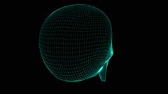Skull. Looping. Stock Footage