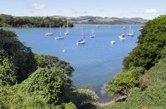 New zealand travel photos - bay of islands Stock Photos