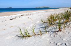 Henderson bay in northland new zealand Stock Photos