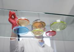 Laboratory technician with petri dishes Stock Photos