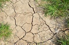 Dried land and grass Stock Photos