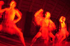 traditional new zealand maori haka dance show - stock photo