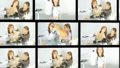 Stock Video Footage of veterinarian , video collage