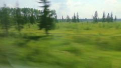 From the windows of high-speed trains on the fields and woods (POV) Stock Footage