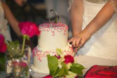USA, Texas, Young bride cutting wedding cake Stock Photos