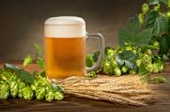 Stock Photo of still life with beer and hops