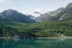 Lush mountain in glacier bay, alaska Stock Photos