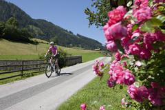 Austria, Salzburger Land, Mid adult woman riding bicycle Stock Photos